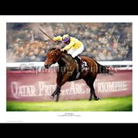 Sea The Stars wins the Arc